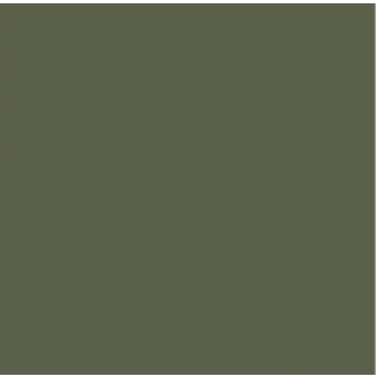 OLIVE GREEN (NCS S6020-G50Y)